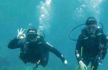 Bateig d'immersió