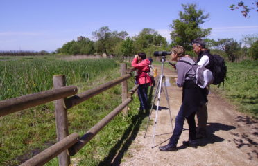 Ecotourism and walking tours in Montgrí Illes Medes and Baix Ter Natural Park